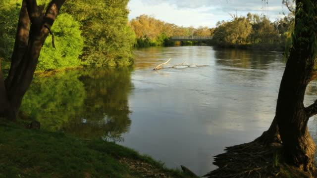Australia Murray River at Albury