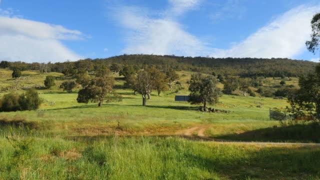 australia murray river countryside - 草地点の映像素材/bロール