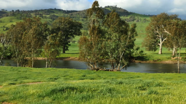 Australia Murray River in green countryside pan