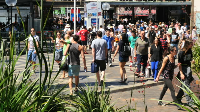 australia sydney crowd of people walking time lapse - time stock videos & royalty-free footage