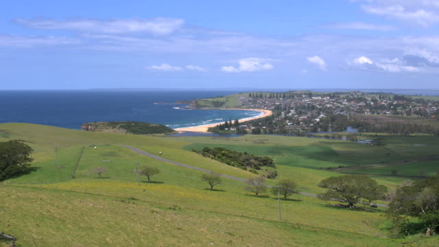 australia zoom on werri beach at gerringong - 2014年点の映像素材/bロール