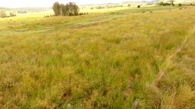 Australian Farmland Aerial
