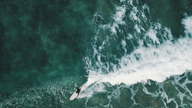 stockvideo's en b-roll-footage met australian locals in sport: aerial view of surfers - surfen