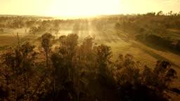 Australian sunset above savannah