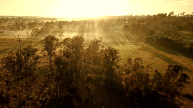 australian sunset above savannah - drone stock videos & royalty-free footage