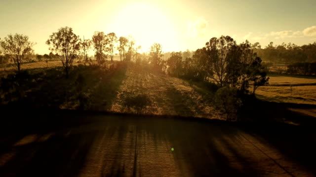 vídeos de stock e filmes b-roll de australian sunset above savannah - arbusto