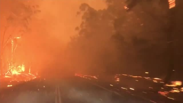 fires raging in every australian state, with 23 dead and over a thousand homes destroyed; australia: new south wales: int / ext point of view shot -... - waldbrand stock-videos und b-roll-filmmaterial