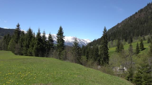 austria alpine peaks zooms in - アッパーオーストリア点の映像素材/bロール