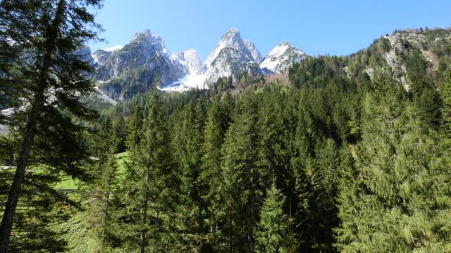 austria peaks and forest - アッパーオーストリア点の映像素材/bロール