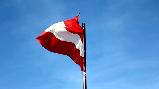 austrian flag (hd) - austrian culture stock videos & royalty-free footage