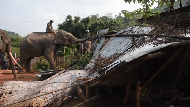 Authorities use elephants and bulldozers to evict hundreds of villagers living illegally in the Amchang Wildlife Sanctuary a protected forest area in...