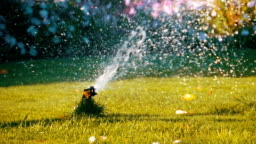 Automatic Lawn Sprinkler on the Garden with Green Grass in Slow Motion