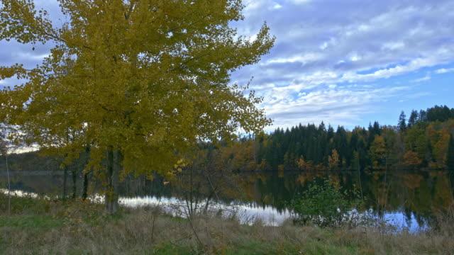 vidéos et rushes de automne nature and lake - vincent pommeyrol