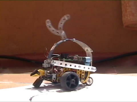 Automobile robot with artificial intelligence