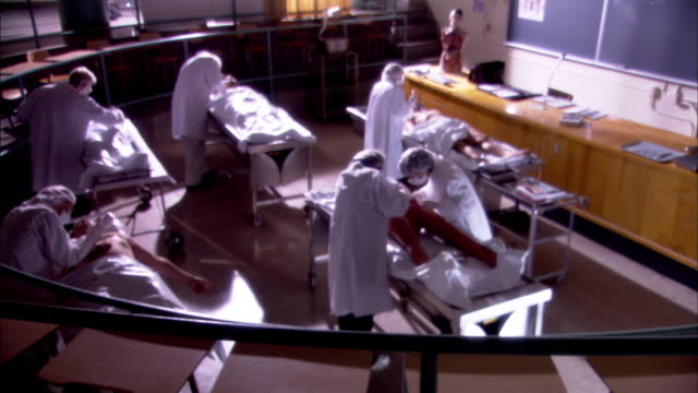 vídeos de stock, filmes e b-roll de autopsy class - autopsia