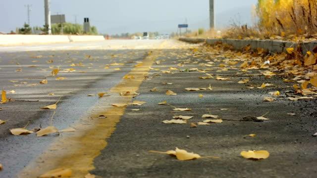 vídeos de stock e filmes b-roll de outono e estrada - sparse