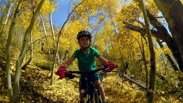 autumn biking - aspen tree stock videos & royalty-free footage