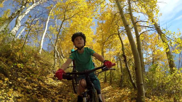 vídeos y material grabado en eventos de stock de autumn biking - árbol de hoja caduca