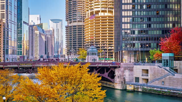 autumn chicago business district - chicago illinois stock videos & royalty-free footage