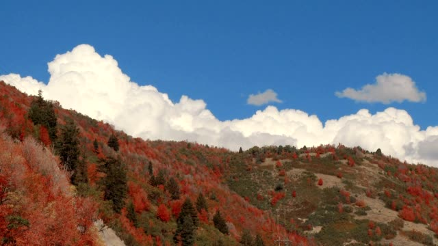 """""""autumn clouds"""" also see: - saturated color stock videos and b-roll footage"""