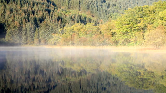 autumn color in loch chon, trossachs national park, scotland. - スコットランド スターリング点の映像素材/bロール