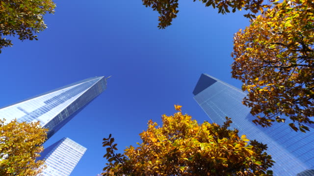 autumn color trees surround one world trade center and skyscrapers under clear blue sky at 9/11 memorial. - world trade center manhattan stock videos & royalty-free footage