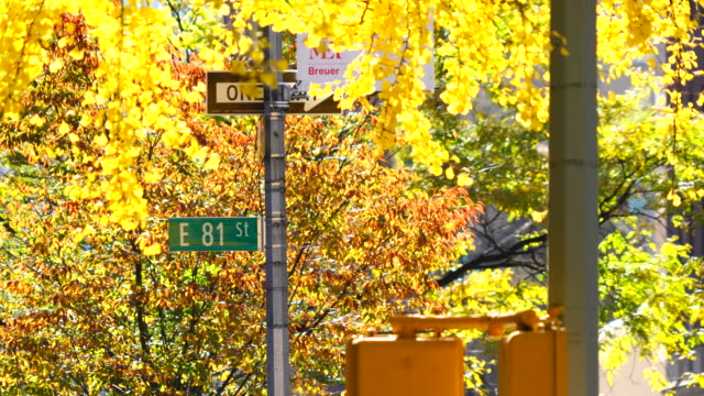 Autumn color trees surround Street Sign at Upper East Manhattan New York.