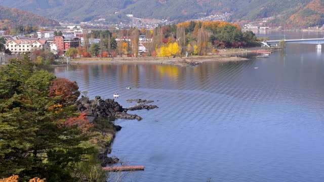 autumn colors at the lake - satoyama scenery stock videos & royalty-free footage