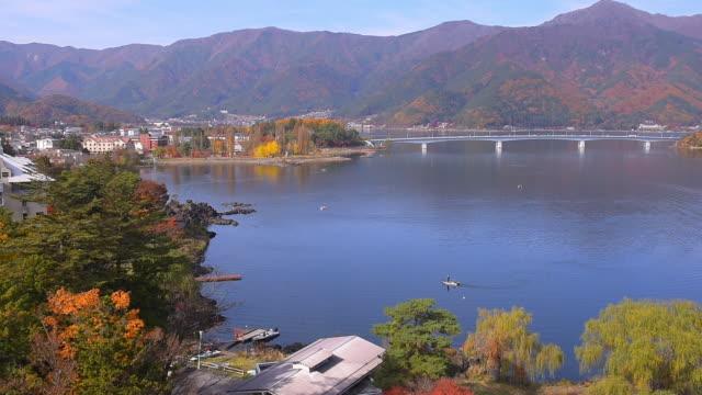 日本の秋の色 - 果物点の映像素材/bロール
