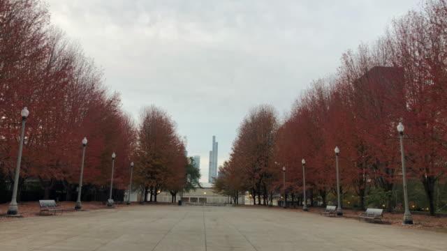 autumn colors in the millennium park of chicago with skyscrapers. - millennium park chicago bildbanksvideor och videomaterial från bakom kulisserna