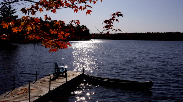 autumn colours at the lake - pier stock videos & royalty-free footage