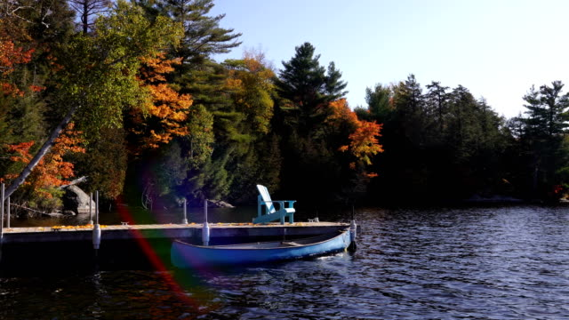 autumn colours at the lake - water's edge stock videos & royalty-free footage