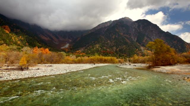 vídeos y material grabado en eventos de stock de colores en otoño kamicochi, japón - pinaceae