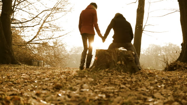 autumn couple - sitting stock videos & royalty-free footage