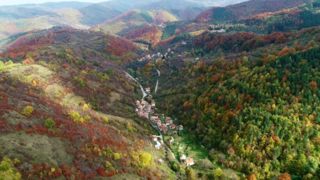 Autumn. Drone Flying over Colorful Valley in the Mountains with Sunlight. Nature Scene, Woodland, Travel, Tourism, Exploration, Outdoors, Vacations