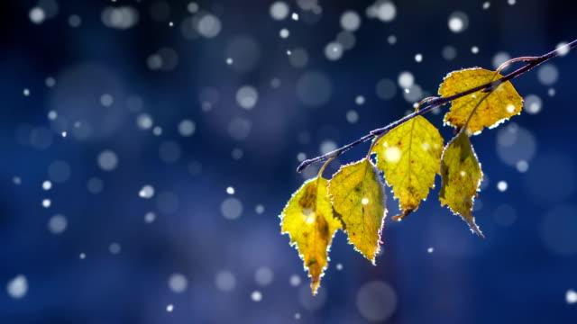 Autunno prima di neve ad anello
