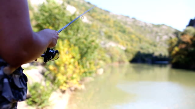 autumn fishing - rod stock videos and b-roll footage
