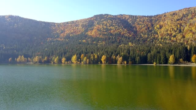 autumn flight above the lake sfânta ana in romania - transilvania video stock e b–roll
