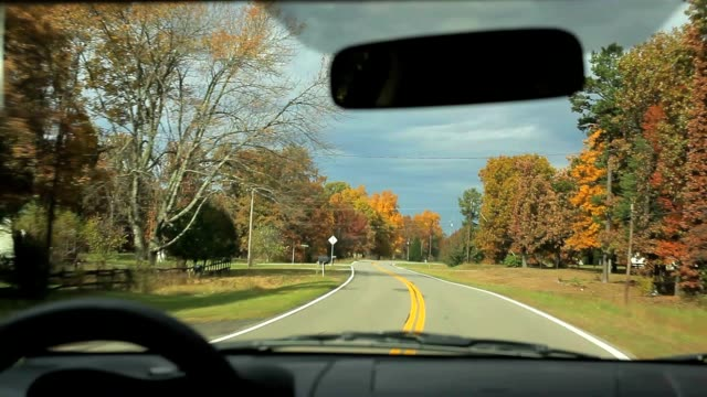 autumn foliage driving on country road - georgia stati uniti meridionali video stock e b–roll