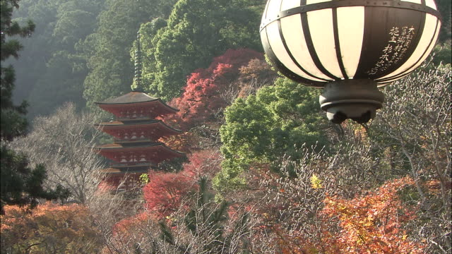 autumn foliage surrounds five story pagoda, lantern in foregroun, nara - pagoda stock videos & royalty-free footage