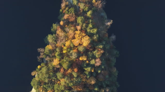 autumn forest aerial view - autumn stock videos & royalty-free footage