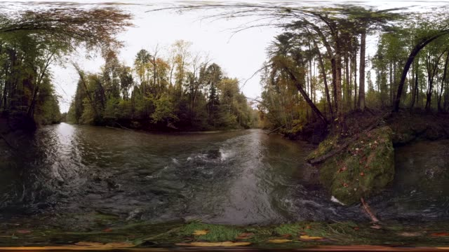 360 VR, autumn forest at mangfall river