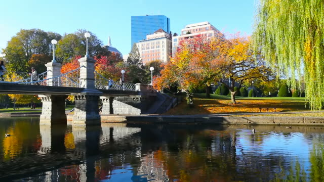 herbst in boston - back bay stock-videos und b-roll-filmmaterial