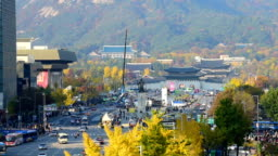 Autumn in Seoul City at Gyeongbokgung palace in Seoul, South Korea.