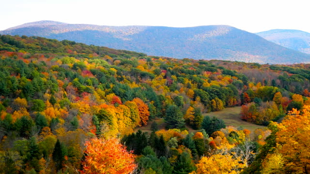herbst in den berkshires - massachusetts stock-videos und b-roll-filmmaterial