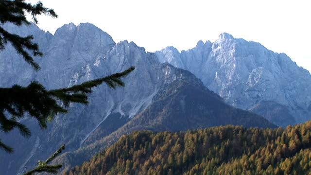 stockvideo's en b-roll-footage met hd: autumn in the mountains - twijg