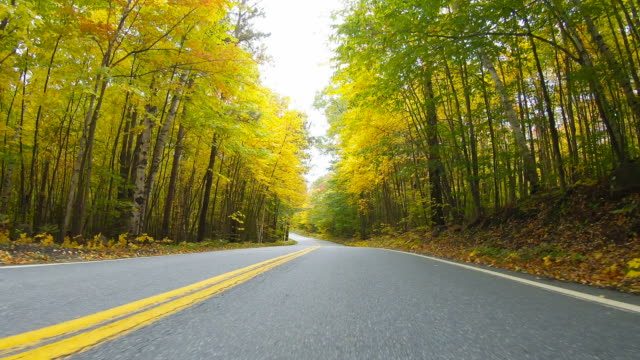 autumn in the northeast kingdom of vermont - vermont stock videos & royalty-free footage