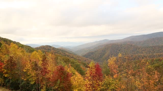 autumn in the smoky mountains - tennessee video stock e b–roll