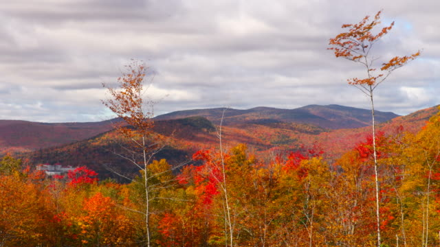 herbst in die white mountains in new hampshire - new hampshire stock-videos und b-roll-filmmaterial