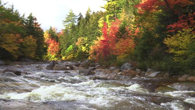 autumn in the white mountains - appalachian mountains stock videos & royalty-free footage